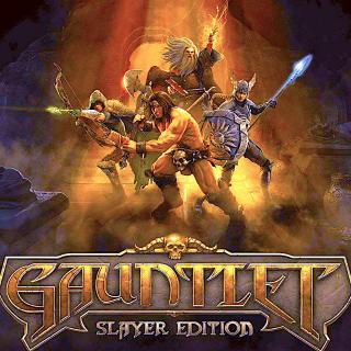Gauntlet Slayer Edition (PC Windows Steam Key Global Digital) Instant Delivery