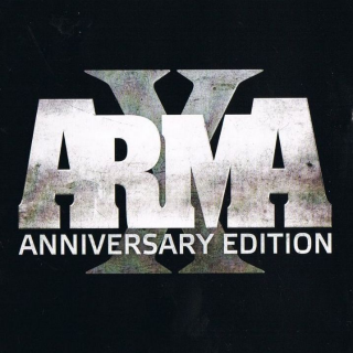 ARMA X: ANNIVERSARY EDITION (PC Windows Steam Key Global Digital) Instant Delivery