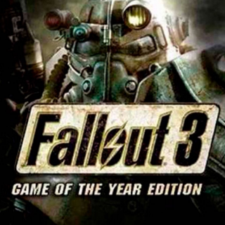 Fallout 3: Game of the Year Edition (PC Windows Steam Key Digital) Instant Delivery