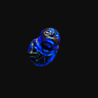 Other | x200  Annulment Orb