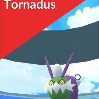 Bundle | Tornadus raid x1
