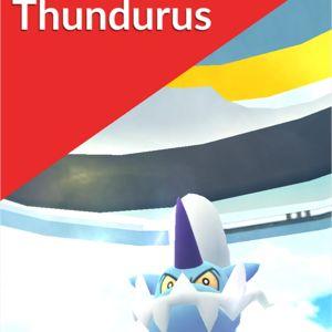 Bundle | Thundurus raid x5