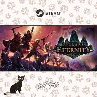 🔑Pillars of Eternity - Hero Edition [SteamKey\RegionFree\InstantDelivery]