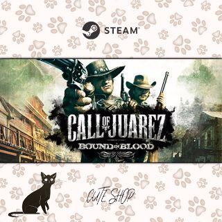 🔑Call of Juarez: Bound in Blood [SteamKey\RegionFree\InstantDelivery]