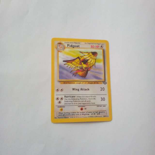 Pidgeot 24/64 Pokemon Card