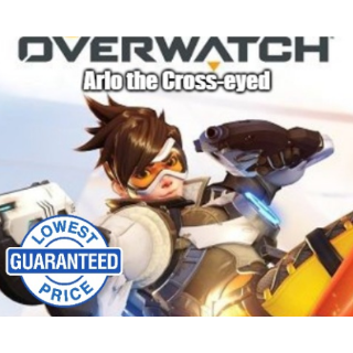 Overwatch Battlenet Key GLOBAL