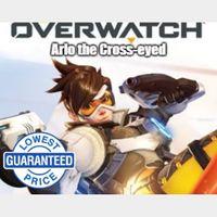 Overwatch Battlenet Key GLOBAL