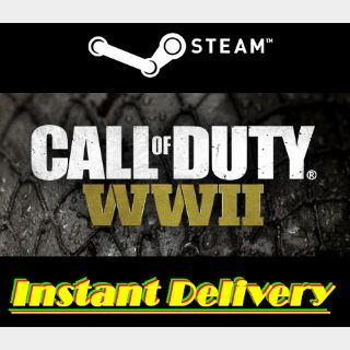 Call of Duty: WWII - Steam Key - Instant Delivery