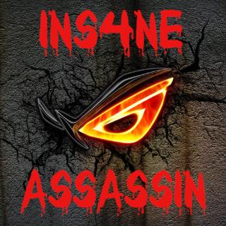 INS4NE ASSASSIN