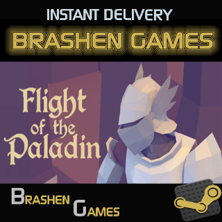 ⚡️ Flight of the Paladin [INSTANT DELIVERY]