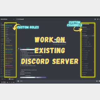 I will work on existing discord server within 24 hours