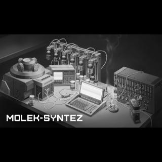 MOLEK-SYNTEZ