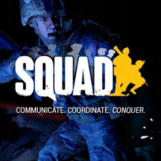 Squad (Steam) - Instant Delivery!