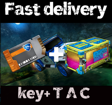 Bundle   233x key + 233x Totally awesome crate
