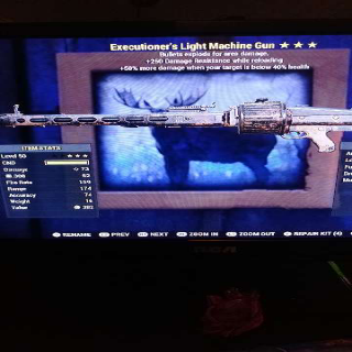 Weapon   Executioners Ex LMG
