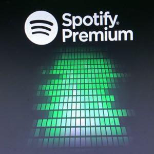 6 months spotify premium