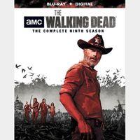 The Walking Dead: Season 9 HD (CNSX...)