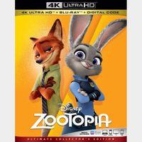 Zootopia MA 4k code only (JW6U...)
