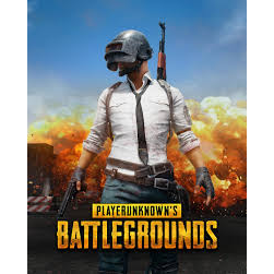 PLAYERUNKNOWN'S BATTLEGROUNDS Steam Global CD Key