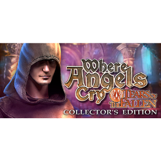 Where Angels Cry: Tears of the Fallen (Collector's Edition) (Steam/Global Instant Delivery)