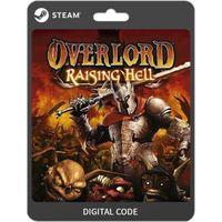 ✔️Overlord: Raising Hell DLC