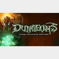 DUNGEONS - Steam Special Edition