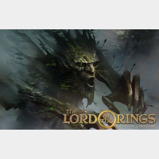✔️The Lord of the Rings Adventure Card Game