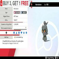 Bundle | Shiny Charizard Gmax HA