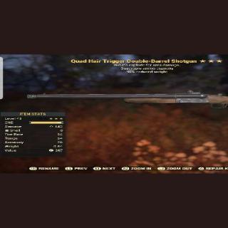 Weapon | QE Double Barrel