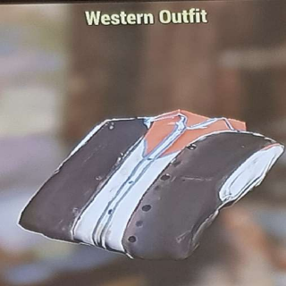 Apparel   Western Outfit