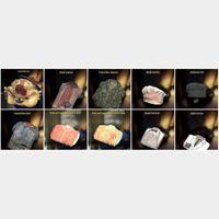 Apparel   (2) COSTUME RARE PACK 😱