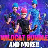 Bundle | Wildcat +2000 V-bucks