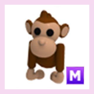 Pet   M Monkey