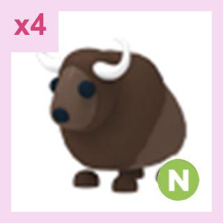 Pet   N Buffalo x4