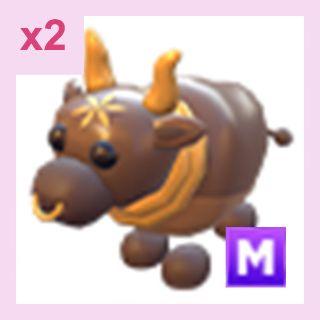 Pet   M Ox x2