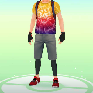 Pokémon GO Avatar Set
