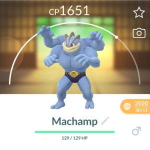 Bundle | Pokémon go. Machamp