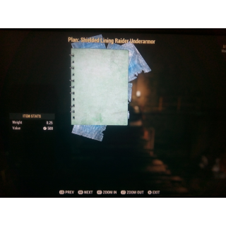 Plan | Shielded Raider Lining