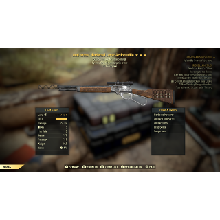 Weapon   AA EXP LEVER ACTION