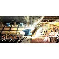 Egyptian Senet Steam PC Mac