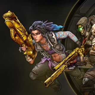 Borderlands 3 Gold Weapon Skins Pack DLC US PS4