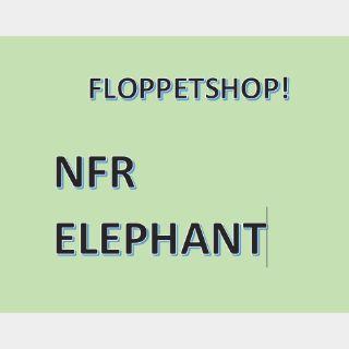 Pet   NFR ELEPHANT