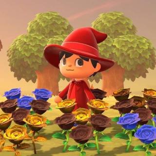 Resource | Flowers Hybrids Any 30x