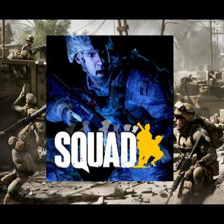 Squad - Steam - INSTANT