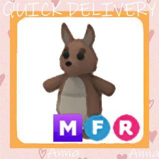 Limited | MFR Kangaroo