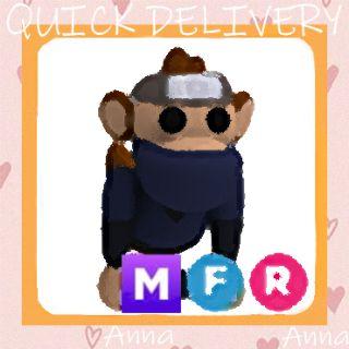 Limited | MFR Ninja Monkey