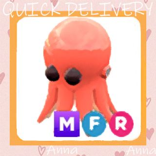 Limited | MFR Octopus