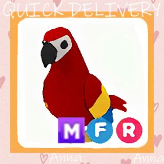 Limited | MFR Parrot