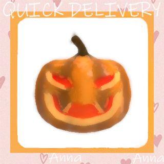 Limited | Pumpkin