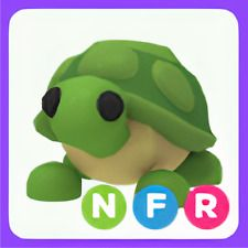 Limited | NFR Turtle
